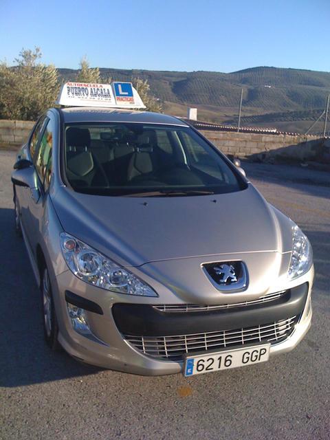 Perfil Peugeot 308
